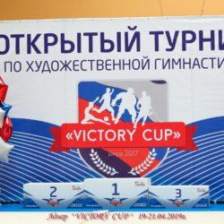sochi-victorycup-2019 (7)